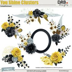 You Shine Clusters Embellishment by DRB Design | ScrapGirls.com
