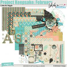 Project Keepsake: February - Collection Biggie