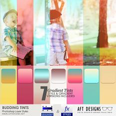 Photoshop Tools - Styles: Budding Gradients