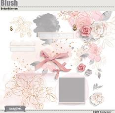 Blush Embellishments by Brandy Murry
