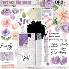 Perfect Moment Embellishment Biggie by DRB Designs | ScrapGirls.com