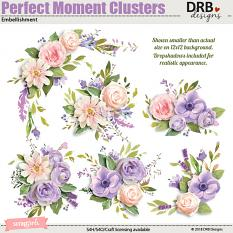 Perfect Moment Clusters Embellishment by DRB Designs | ScrapGirls.com