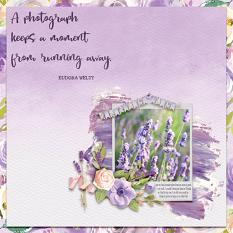 """A Photograph"" digital scrapbook layout by Debby Leonard"