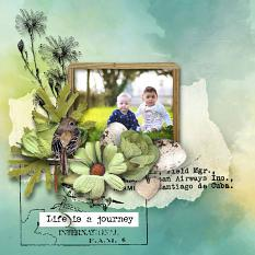 layout using Value Pack: Fly Free by Florju Designs