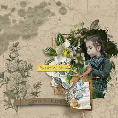 layout using Botany Summer Embellishment Mini: Cluster Pack 1 by florju designs