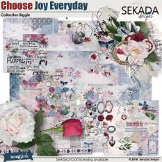 Choose Joy Every Day Collection Biggie