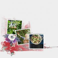 Layout by Marie Orsini using the kits i the Delightful Fruits series by Aftermidnight Design