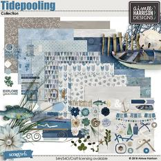 Tidepooling Collection