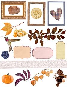 Whispers of Autumn Elements