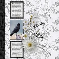 """Photoworthy"" digital scrapbook layout by Judy Webster"