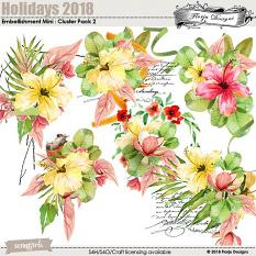 Holidays 2018  Embellishment Mini : Clusters Pack 2 by Florju designs