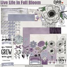 Live Life in Full Bloom Collection by DRB Designs | DRB Designs