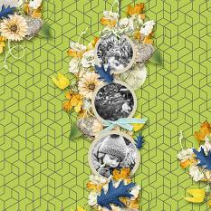 layout using Goodbye August Addon Paper : Geometric Paper by Florju designs