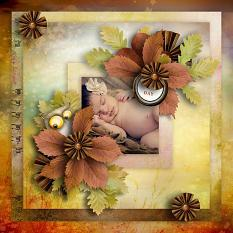 layout using Value Pack : Douceur Automnale by florju designs