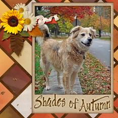 """Shades of Autumn"" digital scrapbook layout by Laura Louie"