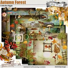 Value Pack : Autumn Forest by florju designs