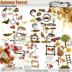Autumn Forest Collection by florju designs