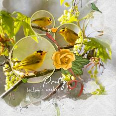 """Wilson's Warbler"" digital scrapbook layout by Geraldine Touitou"