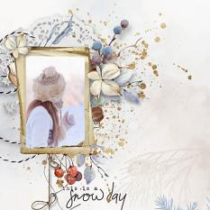 layout using Value pack : Cosy Winter by Florju Designs