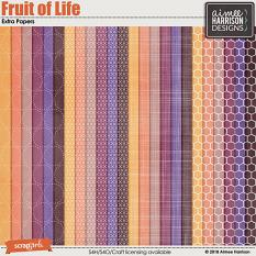 Fruit of Life Extra Papers