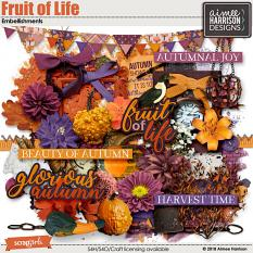 Fruit of Life Embellishments