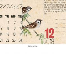 Calendars Vol1 by On A Whimsical Adventure