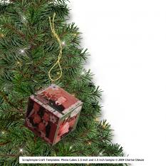 Sample of Completed Photo Cube used as an ornament by Cherise Oleson (see supplies used listed below)