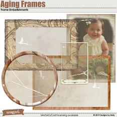 Aging Frames Embellishments by Designs by Helly