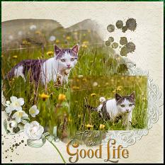 """This is the Good Life"" digital scrapbook layout by Geraldine Touitou"