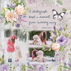 """A Photograph"" digital scrapbook layout by Darryl Beers"