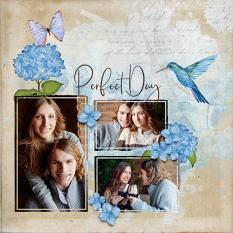 """""""Perfect Day"""" digital scrapbook layout by Darryl Beers"""
