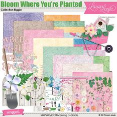 Bloom Where You're Planted Collection Biggie