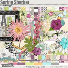 Spring Sherbet Collection Biggie