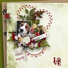 Follow Your Heart1 A Puppy Love Papers Details