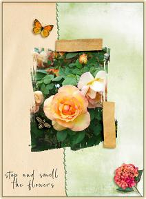"""Stop and Smell the Flowers"" card by Geraldine Touitou"