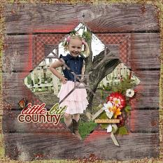 Little Bit Country Layout