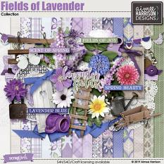 Fields of Lavender Collection