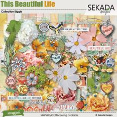 This Beautiful Life Collection Biggie by sekada