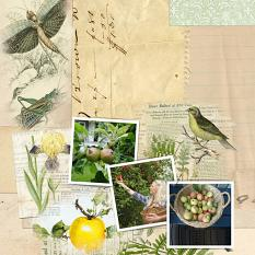 Layout by Marie Orsini using My Garden Paper Mini Junk Journal Pages by Aftermidnight Design