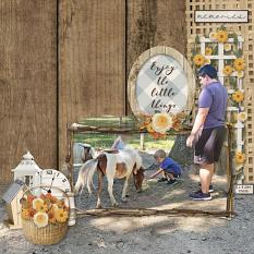 Enjoy The Little Things digital scrapbooking layout by Sue Maravelas featuring the Fall Farmhouse Collections