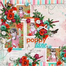 Poppy Lane Layout