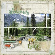 Into the Wild Layout