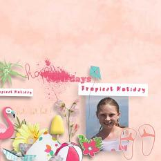Tropical Holidays Solid papers details