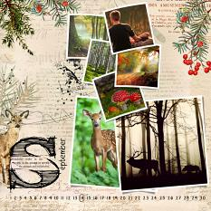 Layout by Marie Orsini using Nordic Woods Collection Mini by Aftermidnight Design