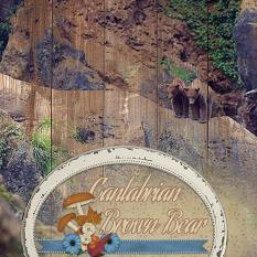 """""""Cantabrian Brown Bear"""" digital scrapbooking layout using Cozy Autumn Collections"""