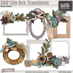 360°Life Oct: Transform Frame Clusters