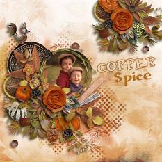 Copper Spice Collection details