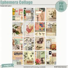Ephemera Collage Pocket Life Journaling Cards 1