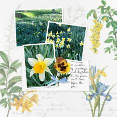 Page by Susie Roberts