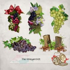 The Vineyard Details by Silvia Romeo